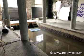 Expo Huizingen wordt uitgesteld door wateroverlast