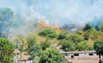 Fuoco a pochi metri dalle case: torna l'incubo degli incendi. La denuncia - ciociariaoggi.it