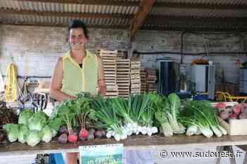 Hasparren : La ferme d'Uhaldia vend désormais ses propres paniers - Sud Ouest