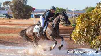 Strong showing at Kalgoorlie Pony Club's Golden Nugget - The West Australian
