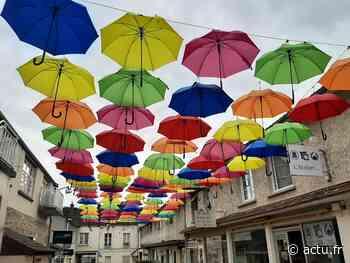 Yvelines. Surprises poétiques à Rambouillet ce vendredi 16 juillet ! - actu.fr