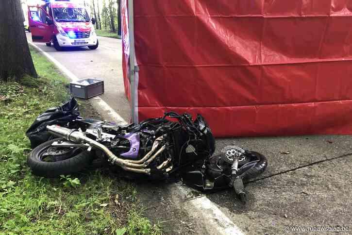 Motorrijder crasht tegen boom