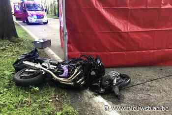 Motorrijder komt om na crash tegen boom
