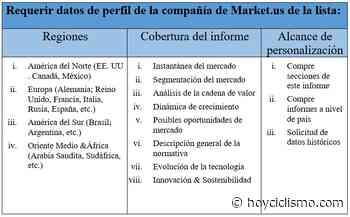 Global Las Barbacoas De Carbón Mercado Demanda de participación de crecimiento potencial y análisis de actores clave: pronósticos de investigación para 2030 | Landmann, Weber, Char-Broil - hoyciclismo - Hoy Ciclismo