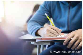 Wel oproep, maar weinig enthousiasme voor zomerschool - Het Nieuwsblad