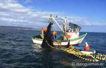 Los EEUU y Ecuador contra la pesca ilegal - Dialoguemos