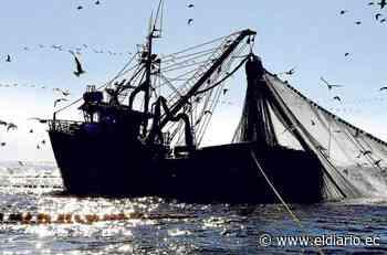 La embajada de Estados Unidos lideró foro sobre la pesca ilegal - El Diario Ecuador