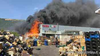 """San Giovanni Rotondo, a fuoco i magazzini 'Panda'. Fumo nero invade la città: """"Chiudete le finestre e state lontani"""" - FoggiaToday"""