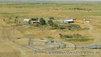 Hughenden's Thornhill aggregation sold before auction - Queensland Country Life