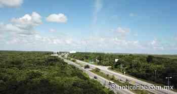 Tren Maya será elevado en el tramo Cancún-Playa del Carmen, anuncia AMLO - Noticaribe