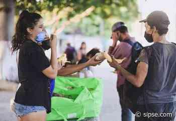 Playa del Carmen: Casa Animal cumple dos años de respetar la vida de los animales - sipse.com