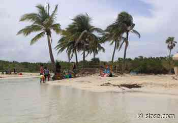 Playa del Carmen: Cumplen playas parámetros para las vacaciones de verano - sipse.com