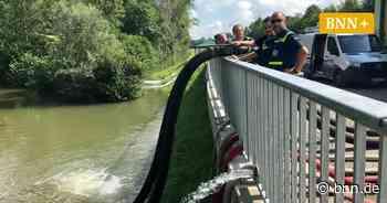 Defekte Pumpe löst Hochwasser-Großeinsatz in Elchesheim-Illingen aus - BNN - Badische Neueste Nachrichten