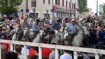 Pescalune de Lunel : la folie bouvine rassemble - Midi Libre