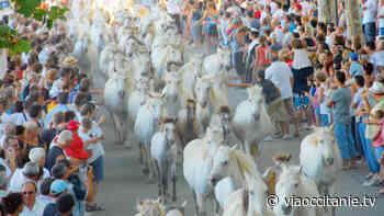 Traditions camarguaises : Lunel fête la Pescalune - ViàOccitanie