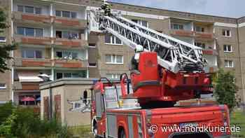 Feuerwehr in Neubrandenburg: An groß angelegter Tauben-Rettung scheiden sich die Geister   Nordkurier.de - Nordkurier