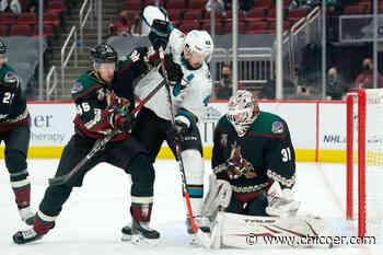 Sharks acquire Adin Hill from Arizona Coyotes for Josef Korenar, draft pick - Chico Enterprise-Record