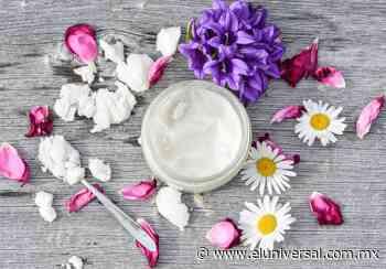 5 usos del aceite de coco para el pelo y la piel | El Universal - El Universal