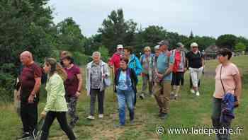 Seysses. Les seniors au contact de la nature - ladepeche.fr