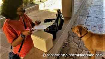 Médica veterinária de Jacarezinho presta atendimento domiciliar preventivo - Portal da Cidade Jacarezinho