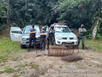 Polícia Ambiental apreende armadilhas para caça em Caraguatatuba - Band Jornalismo