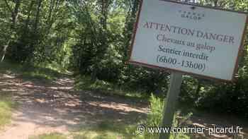 Entre Chantilly et Senlis, même la forêt est un territoire équestre [VIDEO et PHOTOS] - Courrier Picard