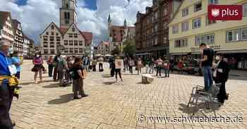 Fridays for Future demonstriert in Biberach | schwäbische - Schwäbische