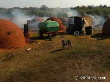 Polícia Ambiental apreende quatro toneladas de carvão na região de Presidente Prudente (SP) - SBT Interior