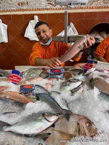 Saint-Tropez : les jolis poissons du marché | Le blog de Gilles Pudlowski - Les Pieds dans le Plat - Les pieds dans le plat