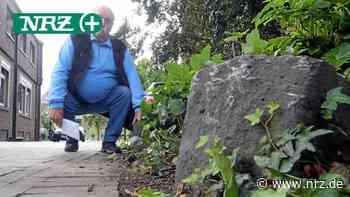 Emmerich: Unfallschaden wegen zugewachsener Steine - NRZ