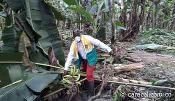 En Vigía del Fuerte hay más de 2 mil damnificados por inundaciones - caracol.com.co