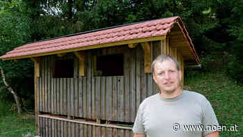 "Abbruchbescheid - Senftenberg: Illegale ""Bienenhütte"" muss weg - NÖN.at"