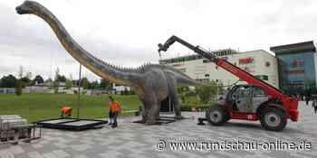 Dinosaurier-Schau: Huma lockt mit Urzeit-Ungetümen nach Sankt Augustin - Kölnische Rundschau