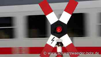 Unfall auf Bahnübergang - Pudel bei Bräunlingen von Zug erfasst - Schwarzwälder Bote