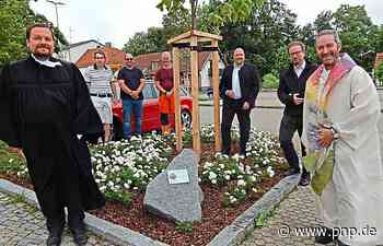 Ein Blauglockenbaum erinnert an die Corona-Toten - Garching an der Alz - Passauer Neue Presse