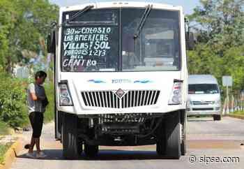 Playa del Carmen: Adquirirán vehículo modelo para posibles concesionarios del transporte público - sipse.com