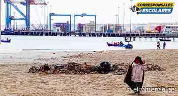 Paita: cerca de 10 empresas ilegales ponen en riesgo la pota - El Comercio Perú