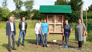 Kooperation im Ammerland: Natur-Projekt für Langzeitarbeitslose - Nordwest-Zeitung