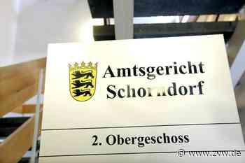 33-Jährige aus Schorndorf wird zu Haftstrafe ohne Bewährung verurteilt - Schorndorf - Zeitungsverlag Waiblingen