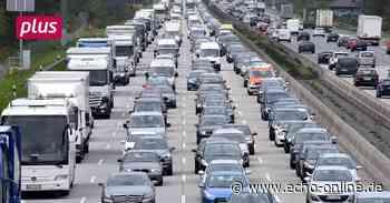 Hündin sorgt für Sperrung der Autobahn bei Weiterstadt - Echo Online