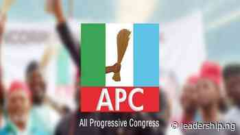 APC Youths Seek Suspension Of Yobe Chairman Over Anti-party Activities - LEADERSHIP NEWS