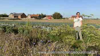 Sortie : Des visites à la ferme programmées au Doulieu et à Laventie - La Semaine dans le Boulonnais