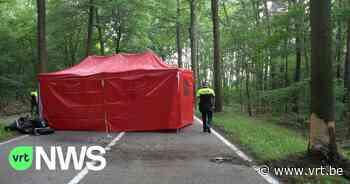 Motorrijder overleden na ongeval in Meerhout - VRT NWS