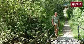 Hardy Pilsel aus Tettnang repariert Fußweg einfach selbst - Schwäbische