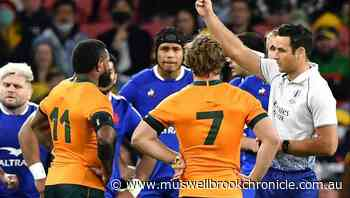 Wallabies ace cleared of tackle charge - Muswellbrook Chronicle