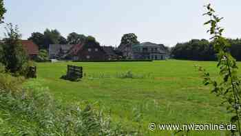 14 oder 15 Grundstücke: Neubaugebiet in Seefeld nicht vor 2023 - Nordwest-Zeitung