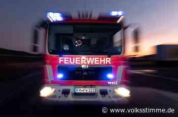 Feueralarm in Wohnung in Haldensleben: Katzen am Herd? - Volksstimme