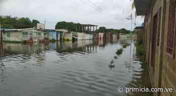 Fuerte lluvia y vientos causaron daños en San Fernando de Apure - Diario Primicia - primicia.com.ve