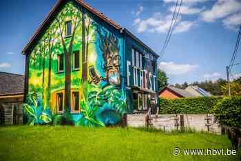 DEEL 3. Sven en Polina uit Ham lieten hun huis volledig bespuiten met graffiti - Het Belang van Limburg