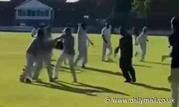 Bat-wielding thugs attack players as tempers explode at end of charity sports match